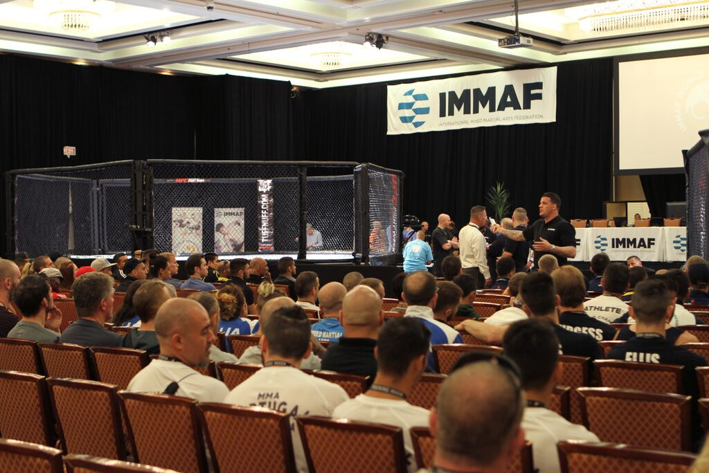 MMA Official Vito Paolillo discusses his journey with IMMAF