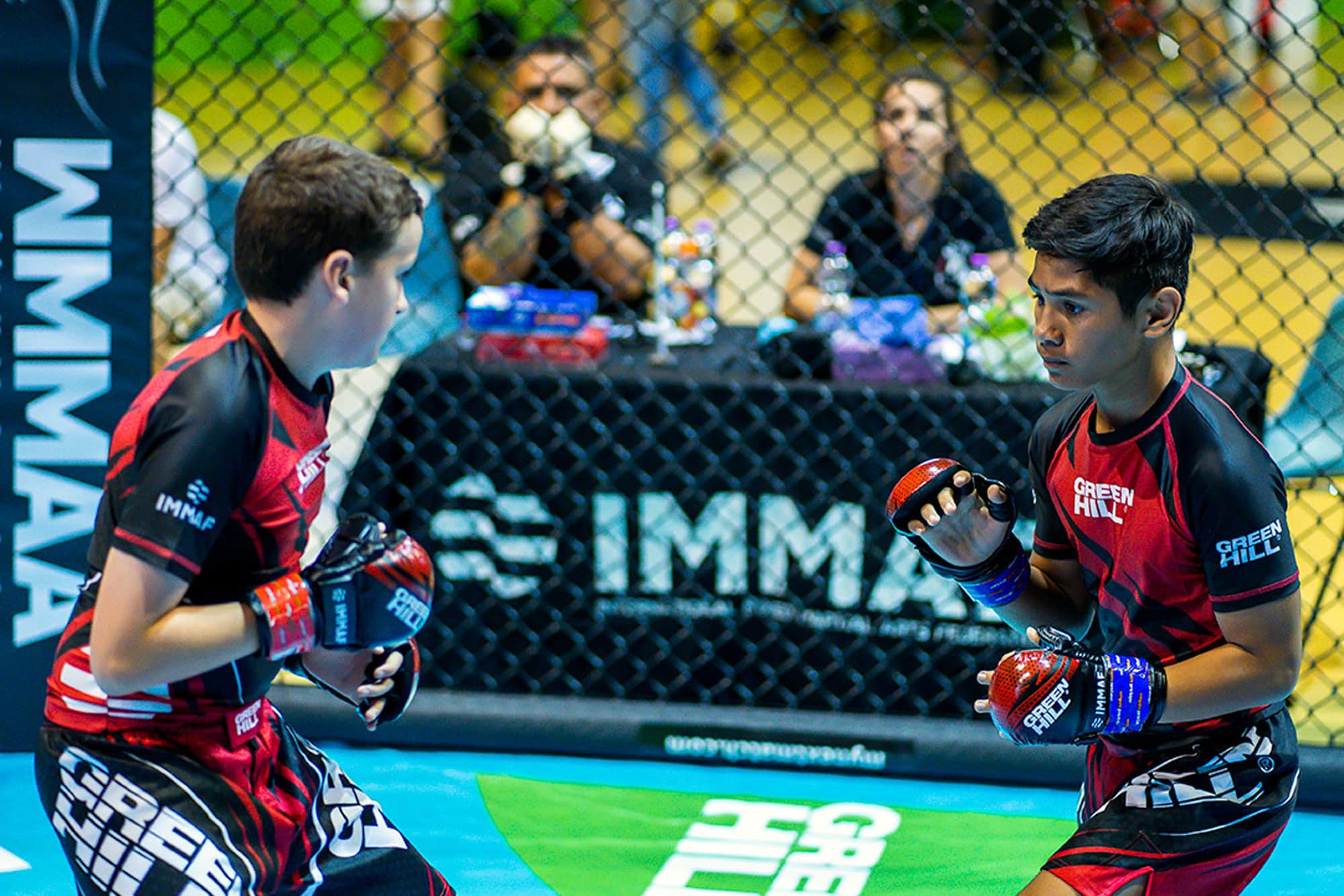 Update on IMMAF gradings for competition policy